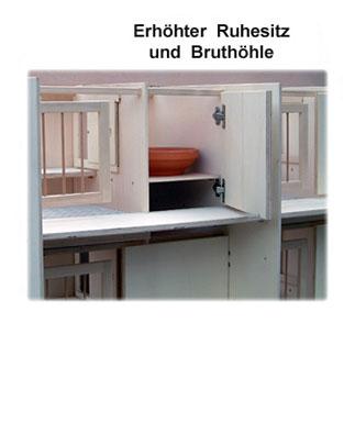 tauben_kompaktzelle_3