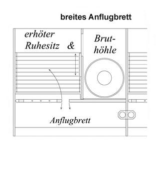 tauben_kompaktzelle_4