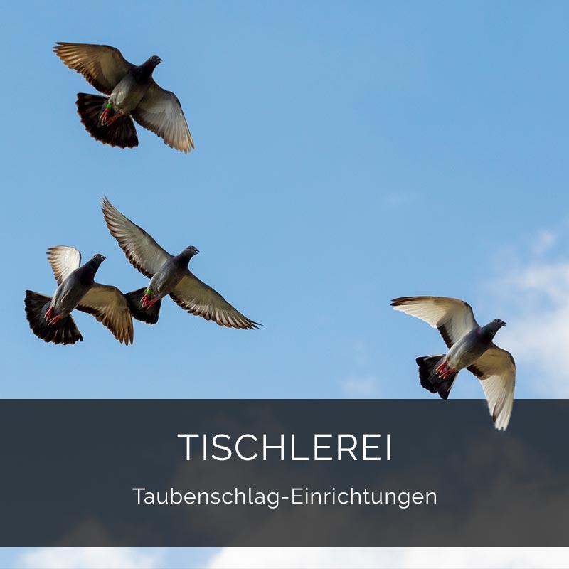 Tischlerei Taubenschlag Einrichtung